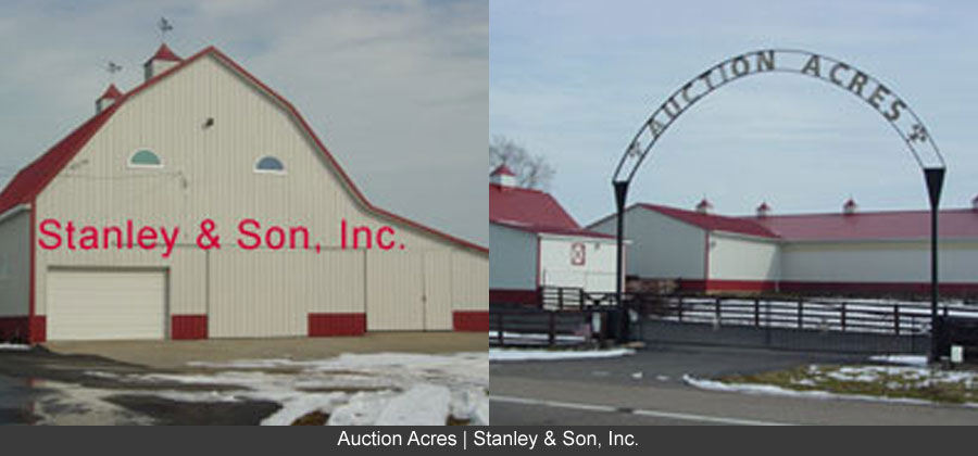 auction acres